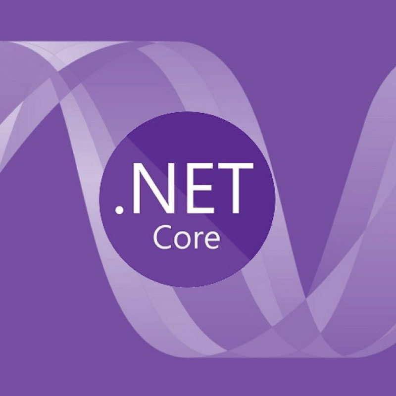 ASP.Net Core Web Application mfd consulting
